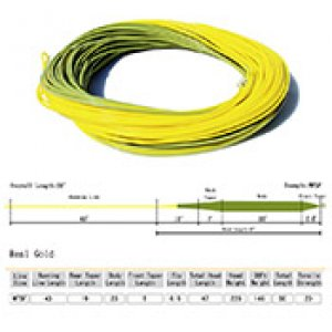 REAL fly fishing line Gold