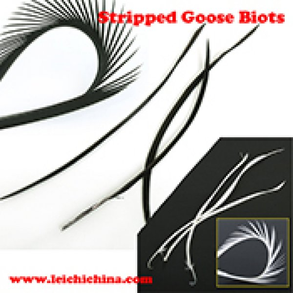 Stripped goose biots