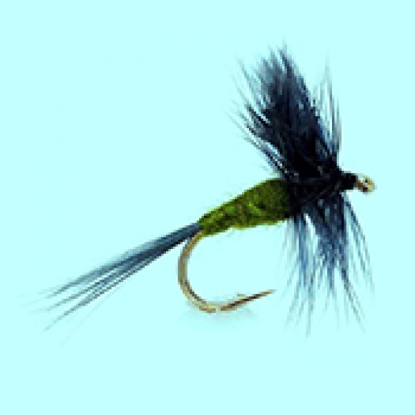 Dry fly Blue Winged Olive
