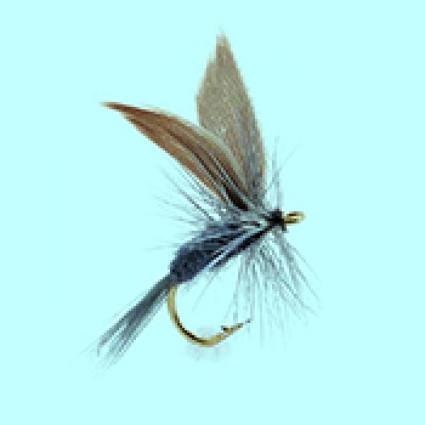 Dry fly Blue Dun